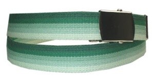 WN-M40 1.25 INCH WIDE MILITARY WEB STRAP MULTI-COLOR GREEN